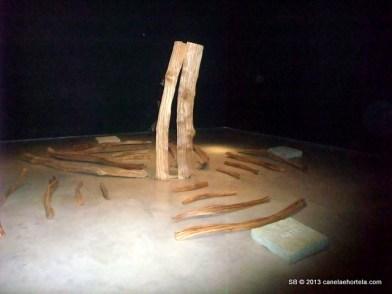 foz_coa_museu_gravuras (8)
