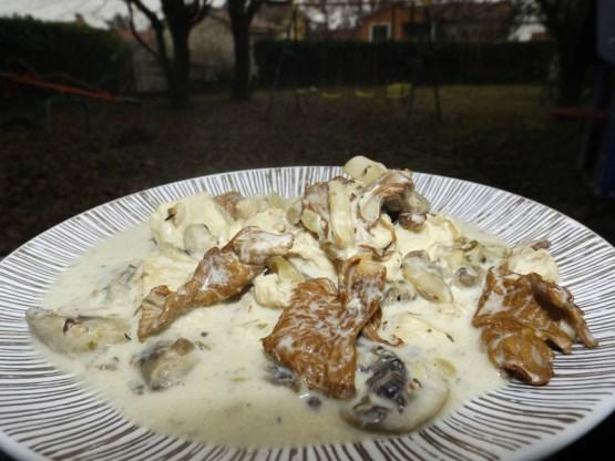 Blanquette de dinde aux champignons ( de Paris et Girolles ).jpg