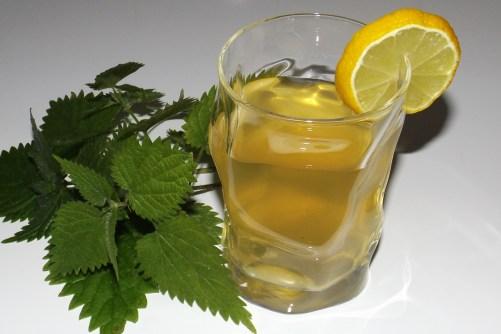 Maté froid à la menthe, citron et ortie