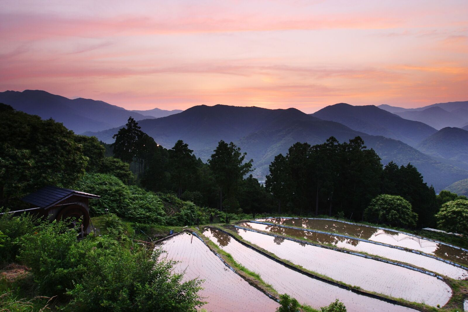 Three Off The Beaten Track Adventures In Rural Japan
