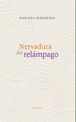 18_Nervadiraderelampago