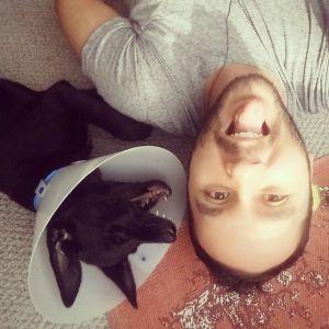 mumú adopcion de perros en bogota