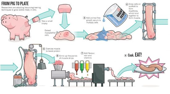 artificial-meat-foodgularity