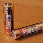 Two Alkaline Batteries