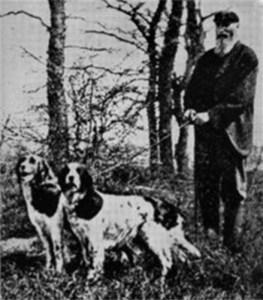 Llewellintwodogs1