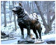 Statua di Balto a Central Park