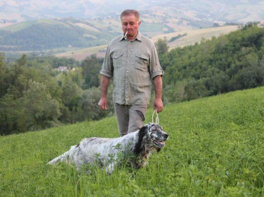 addestramento cane da ferma