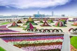 Dubai Miracle Garden (32)