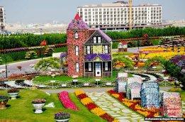 Dubai Miracle Garden (9)