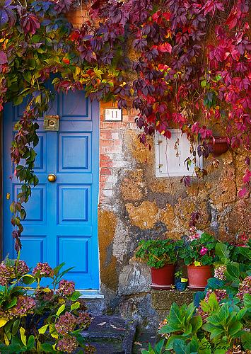 Rengarenk çiçekli kapı giriş tasarımları (25)