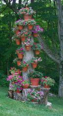 İnanılmaz Bahçe Düzenleme Fikirleri - Kendin yap (17)