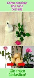 İnanılmaz Bahçe Düzenleme Fikirleri - Kendin yap (33)