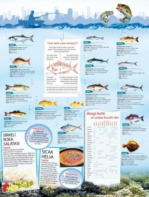 Hangi balık hangi mevsim yenir