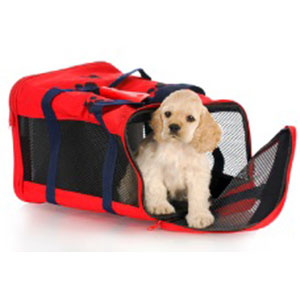 Dog Travel Safety on Your Next Trip