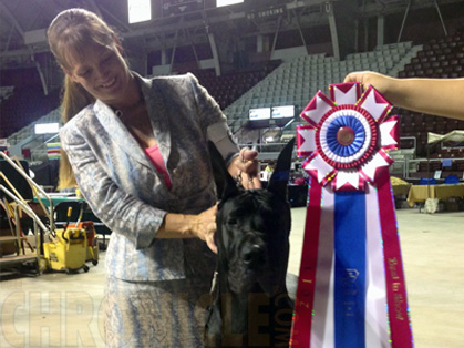 Arkansas Kennel Club  Saturday August 10 2013  Canine Chronicle