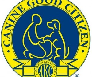 Canine Good Citizen Training for Rhode Island Residents