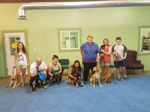 Dogs and their owners at Elementary Dog Training