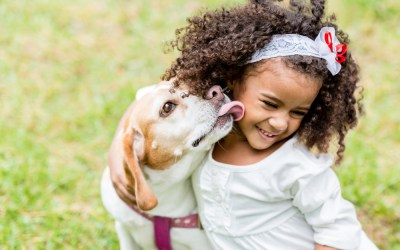 Training Your Dog to Play Nice with Children