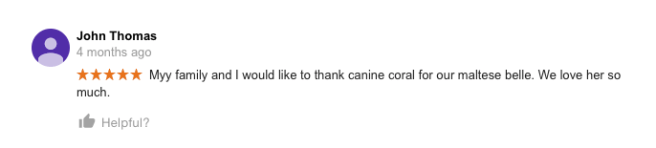 canine-corral-huntington-ny