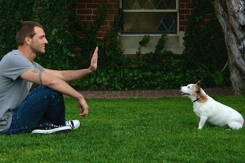 Guy giving his dog stay command