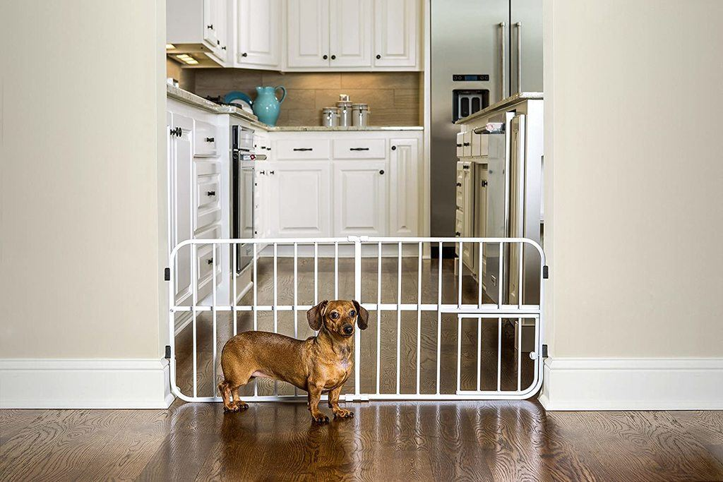 Carlson Pet Products Lil Tuffy Expandable Gate