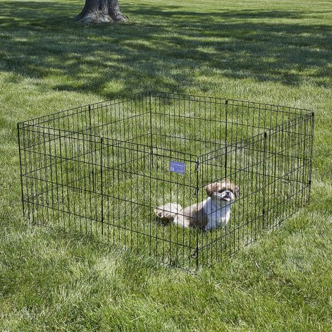 10 Best Dog Gates and Playpens of 2020