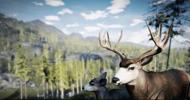 Deaf Game Review – Hunting Simulator