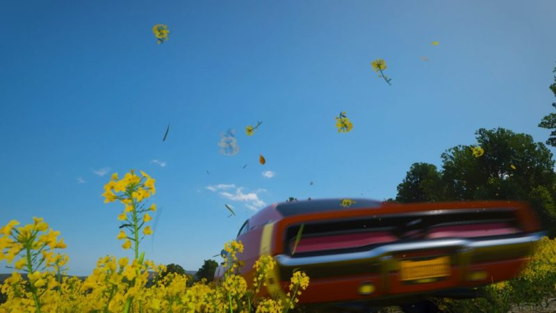Deaf Game Review – Forza Horizon 4