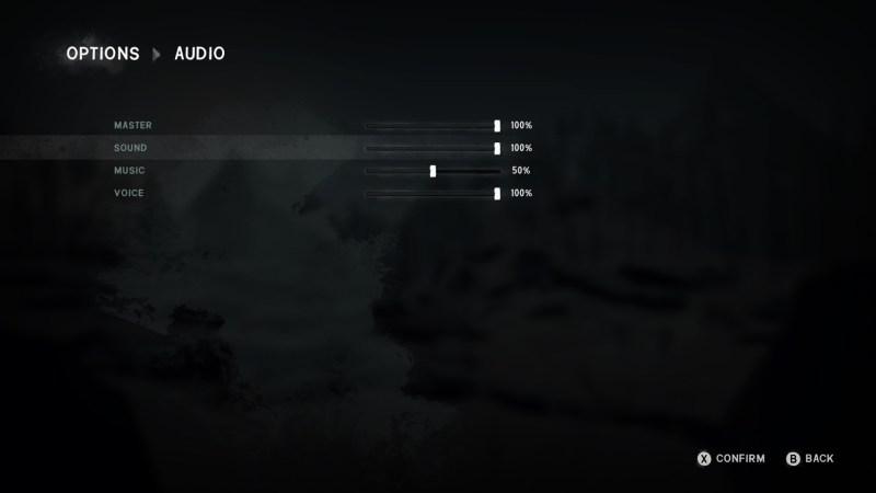 Audio options screen