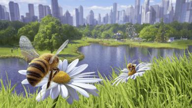 Kid-Friendly Review Series – Bee Simulator