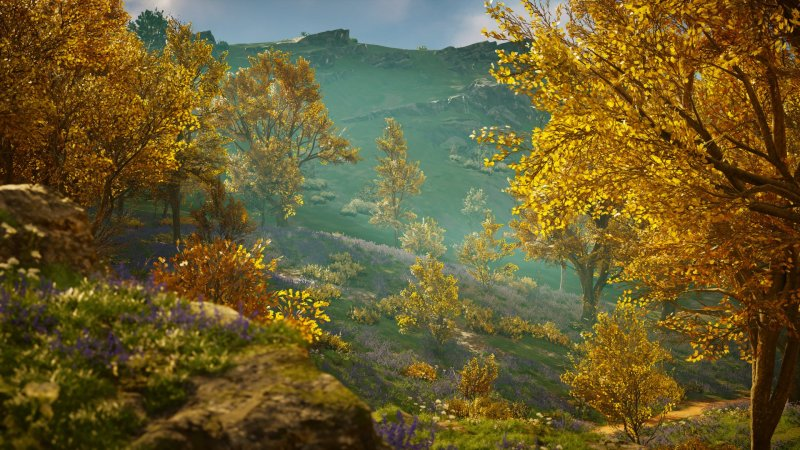 Assassin's Creed Valhalla shot of a beautiful hillside with orange leaves and violet flowers among the grass
