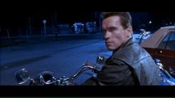 CIBASS Terminator Dos