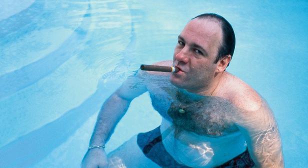 CIBASS Tony Soprano en su piscina
