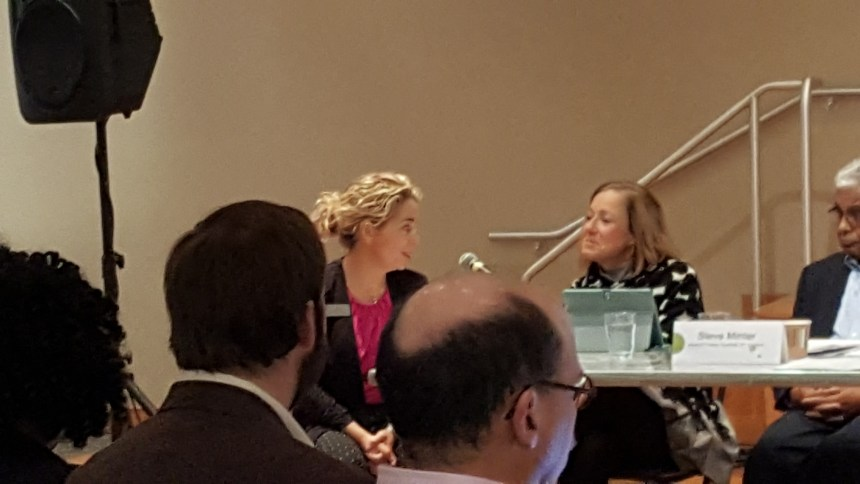 CAC Staff discusses the proposed Creative Community Fellowships, administered by Washington, DC-based National Arts Strategies, during CAC's November 14 Board Meeting.