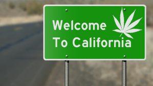 buy weed online california