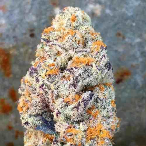 orange zkittlez