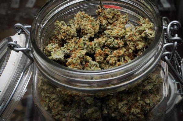 comment faire pousser du cannabis en int rieur en 5 tapes. Black Bedroom Furniture Sets. Home Design Ideas