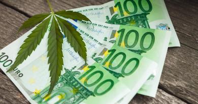 feuille de chanvre déposée sur des billets de 100 euros, où acheter du cbd