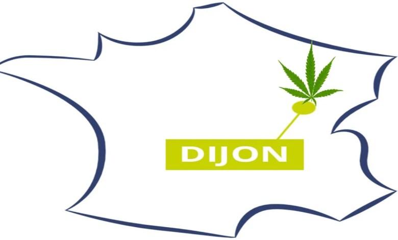 carte de France montrant Dijon avec une feuille de cannabis