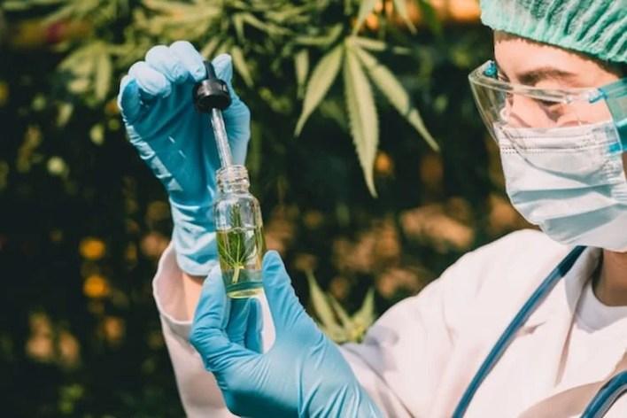 scientifique qui tient une fiole de cbd, études sur le cbd