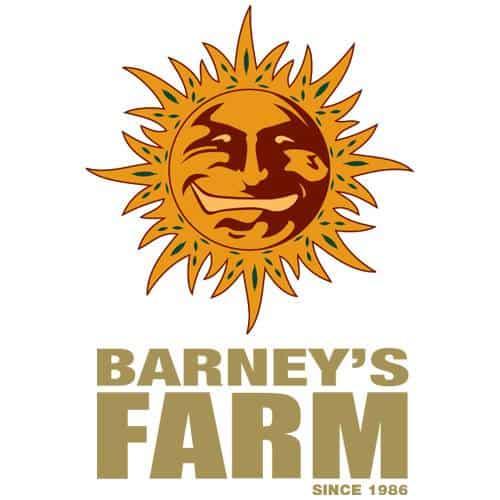 Hanfsamen Barneys Farm