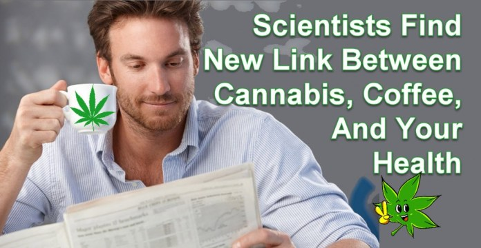 CANNABIS  AND COFFEE FOR YOUR HEALTH