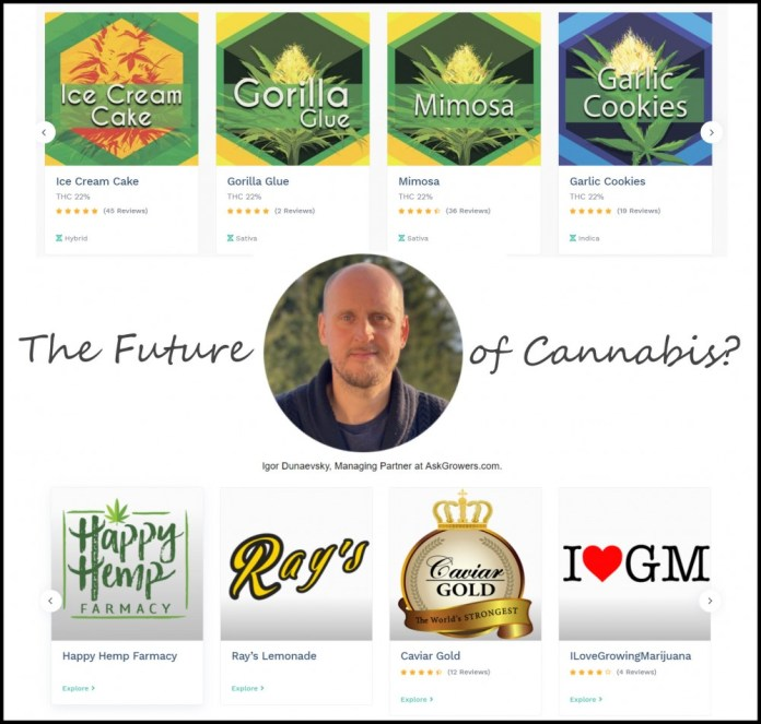 the future of cannabis