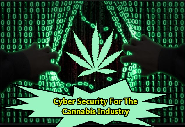 CYBERSECURITY IN CANNABIS