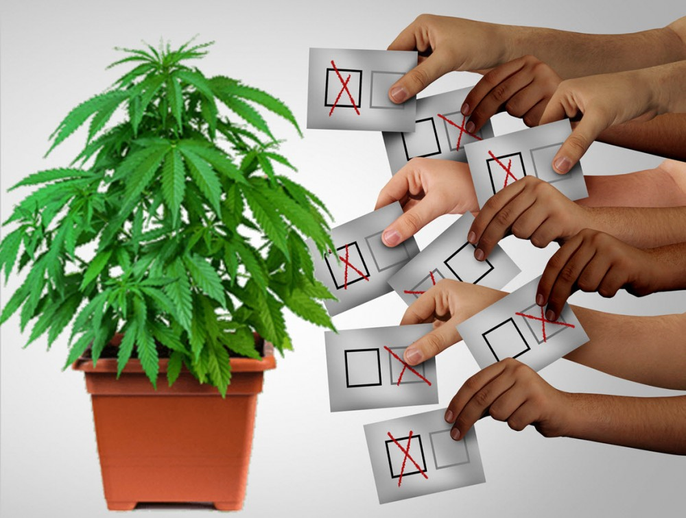 new plan to legalize weed