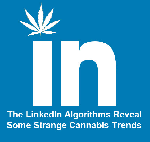LINKEDIN MARIJUANA JOBS