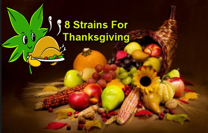 CANNABIS STRAINS FOR THANKSGIVING
