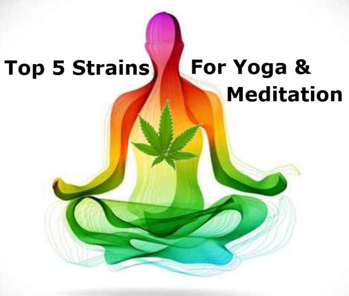 CANNABIS STRAINS FOR YOGA AND MEDITATION