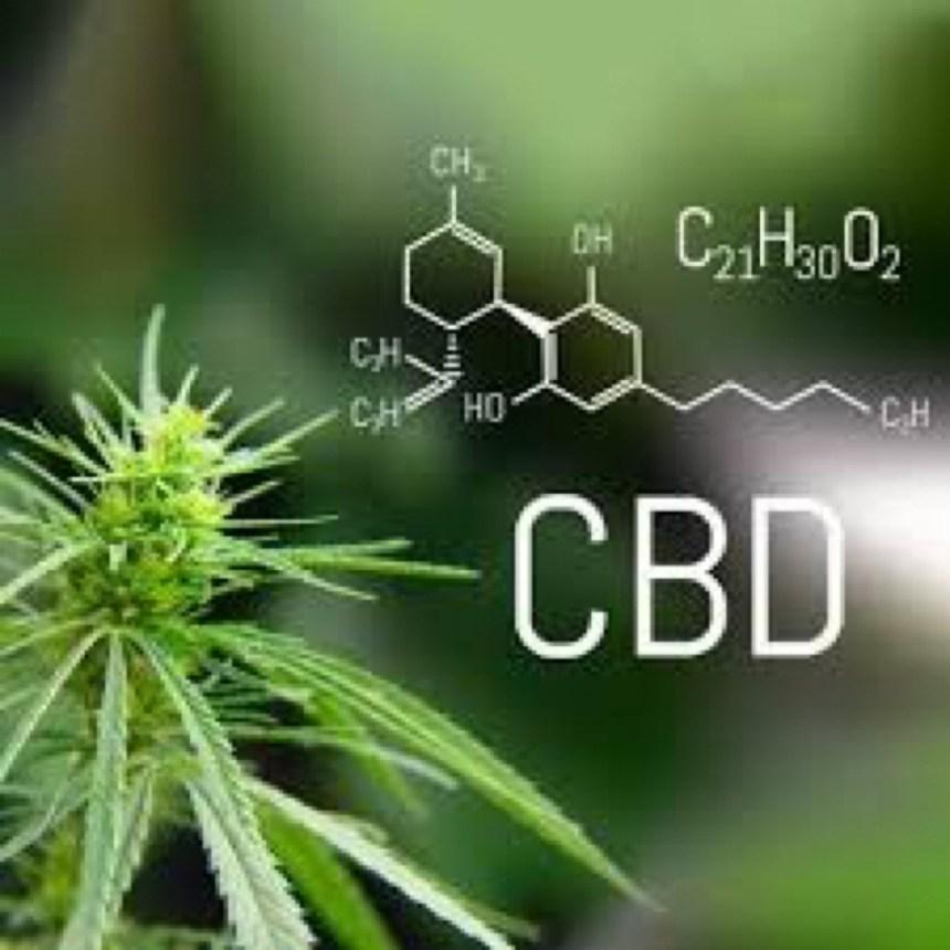 Cannabis Buyers Dispensary   Kentucky CBD, Medical Cannabis