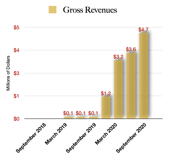 Next Green Wave NXGWF Stock Revenue